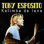 Tony Esposito Kalimba De Luna