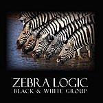 Black And White Zebra Logic