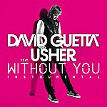 David Guetta Without You (Feat.Usher) [Instrumental Version]