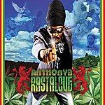 Anthony B Rasta Love