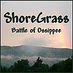 ShoreGrass Battle Of Ossippee