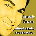 Alfredo Sadel Amorcito Corazon