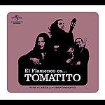 Tomatito Flamenco Es...Tomatito