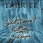 The Singles What Doesn't Kill You (Stronger Kelly Clarkson Tribute)