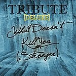The Singles What Doesn't Kill You (Stronger Kelly Clarkson Deluxe Tribute)