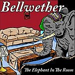 Bellwether The Elephant In The Room