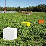 The Caribbean Plastic Explosives