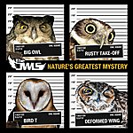 Owls Nature's Greatest Mystery