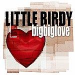Little Birdy Bigbiglove