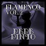 Pepe Pinto Flamenco: Pepe Pinto Vol.2