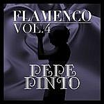 Pepe Pinto Flamenco: Pepe Pinto Vol.4
