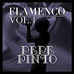 Pepe Pinto Flamenco: Pepe Pinto Vol.1