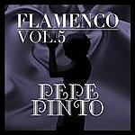 Pepe Pinto Flamenco: Pepe Pinto Vol.5