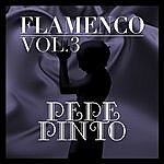 Pepe Pinto Flamenco: Pepe Pinto Vol.3
