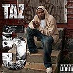 Taz Category 5