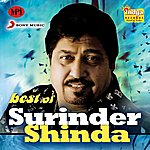 Surinder Shinda Best Of Surinder Shinda