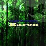 Baron Jungle Modulation