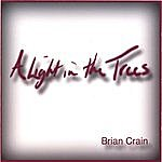 Brian Crain A Light In The Trees