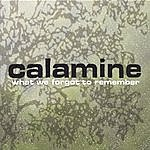Calamine What We Forgot To Remember