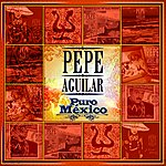 Pepe Aguilar Puro México