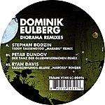 Dominik Eulberg Diorama Remixes
