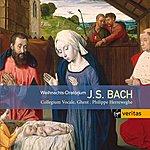 Philippe Herreweghe J.S. Bach: Weihnachts-Oratorium