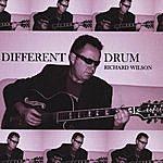 Richard Wilson Different Drum