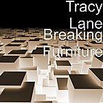 Tracy Lane Breaking Furniture