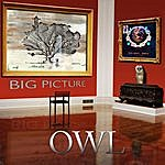 Owl Big Picture
