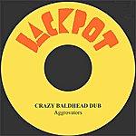The Aggrovators Crazy Baldhead Dub
