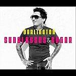 Darlington Sunglasses & Sugar