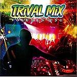 Aniceto Molina Trival Mix