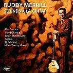 Buddy Merrill Sounds A La Guitar