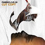 Cut Copy Fabriclive 29: Cut Copy