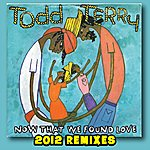 Todd Terry Now That We Found Love (2012 Remixes)