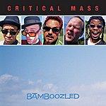 The Critical Mass Bamboozled