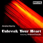 Andre Harris Unbreak Your Heart (Feat. Andrew Pascale) - Single