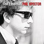 Ray Peterson The Essential Phil Spector