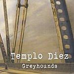 Templo Diez Greyhounds