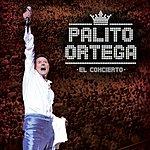 Palito Ortega El Concierto
