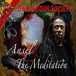 Ansel Meditation Dangerous Society