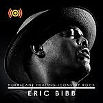Eric Bibb Icons Of Rock: Eric Bibb