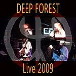 Deep Forest Night Bird Live 2009