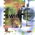 Ani DiFranco Swing Set
