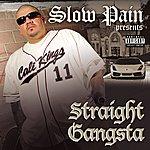 Slow Pain Straight Gangsta