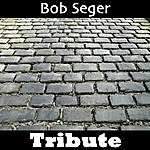 Mystique Hollywood Nights: Tribute To Bob Seger