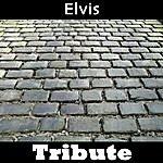 Mystique All Shook Up: Tribute To Elvis Presley Part 2