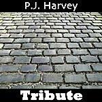 Mystique Dress: Tribute To P. J Harvey