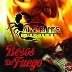 Alacranes Musical