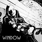 The Window Window